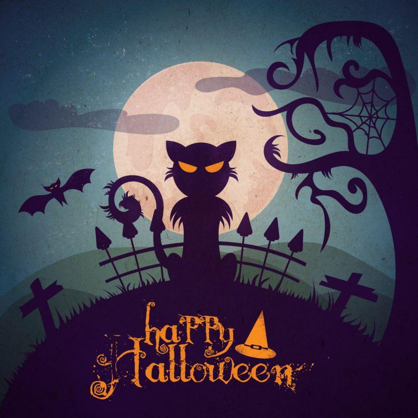 tuto chat vectoriel illustrator halloween