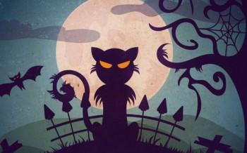Tutoriel llustration chat vectoriel pour Halloween avec Illustrator