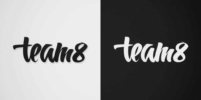 logo team8
