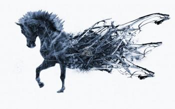 Cheval destructuré by Romain etcwear