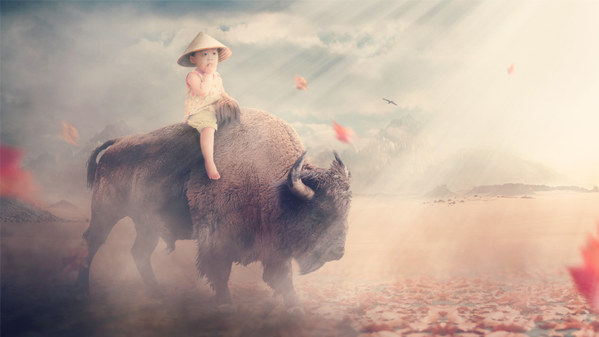 tuto photoshop photo manipulation bison